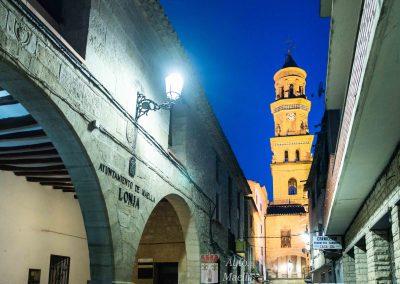 LONJA y TORRE DEL RELOJ (Ayuntamiento)